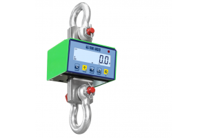 MOVING-LIFTING-SINGLE SECURITY CRANE SCALES